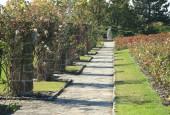 http://gardenpanorama.cz/wp-content/uploads/img_6543-170x115.jpg