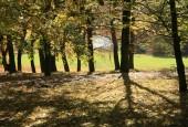 http://gardenpanorama.cz/wp-content/uploads/img_6546-170x115.jpg