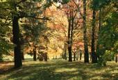 http://gardenpanorama.cz/wp-content/uploads/img_6549-170x115.jpg
