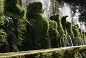 http://gardenpanorama.cz/wp-content/uploads/img_6786-170x115.jpg