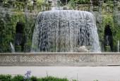 http://gardenpanorama.cz/wp-content/uploads/img_6798-170x115.jpg
