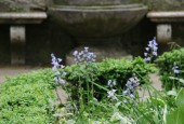 http://gardenpanorama.cz/wp-content/uploads/img_6805-170x115.jpg