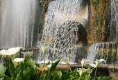 http://gardenpanorama.cz/wp-content/uploads/img_6870-170x115.jpg
