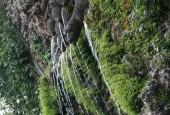 http://gardenpanorama.cz/wp-content/uploads/img_6878-170x115.jpg