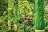 http://gardenpanorama.cz/wp-content/uploads/img_7791-170x115.jpg