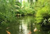 http://gardenpanorama.cz/wp-content/uploads/img_7795-170x115.jpg