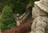 http://gardenpanorama.cz/wp-content/uploads/img_8450-170x115.jpg
