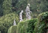 http://gardenpanorama.cz/wp-content/uploads/img_9138-170x115.jpg
