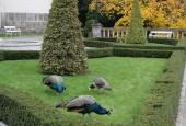 http://gardenpanorama.cz/wp-content/uploads/img_9176-170x115.jpg