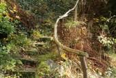 http://gardenpanorama.cz/wp-content/uploads/img_9228-170x115.jpg