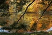 http://gardenpanorama.cz/wp-content/uploads/img_9247-170x115.jpg