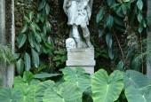 http://gardenpanorama.cz/wp-content/uploads/isolla_bella_DSCF0050_012-170x115.jpg
