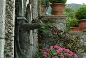 http://gardenpanorama.cz/wp-content/uploads/isolla_bella_DSCF0110_025-170x115.jpg