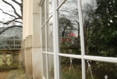 http://gardenpanorama.cz/wp-content/uploads/kamelie_pilnitz__mg_0630_05-170x115.jpg