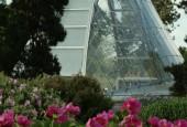 http://gardenpanorama.cz/wp-content/uploads/kew_373_373_DSCF0145_01_03-170x115.jpg
