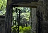 http://gardenpanorama.cz/wp-content/uploads/krystov_cizek_olsany_heavens_door_01-170x115.jpg