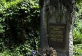 http://gardenpanorama.cz/wp-content/uploads/krystov_cizek_olsany_sovi_hrob_03-170x115.jpg