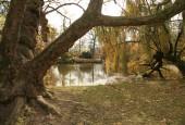 http://gardenpanorama.cz/wp-content/uploads/ledniceimg_7856_017-170x115.jpg