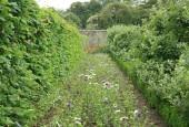 http://gardenpanorama.cz/wp-content/uploads/lost_gard_heliganimg_2974-170x115.jpg