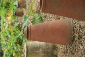 http://gardenpanorama.cz/wp-content/uploads/lost_gard_heliganimg_2980-170x115.jpg