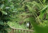 http://gardenpanorama.cz/wp-content/uploads/lost_gard_heliganimg_3097-170x115.jpg