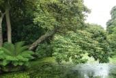 http://gardenpanorama.cz/wp-content/uploads/lost_gard_heliganimg_3102-170x115.jpg