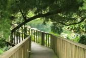 http://gardenpanorama.cz/wp-content/uploads/lost_gard_heliganimg_3119-170x115.jpg