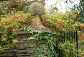 http://gardenpanorama.cz/wp-content/uploads/lost_gard_heliganimg_3205-170x115.jpg