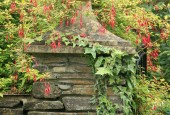 http://gardenpanorama.cz/wp-content/uploads/lost_gard_heliganimg_3206-170x115.jpg