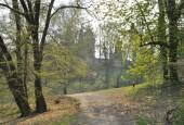 http://gardenpanorama.cz/wp-content/uploads/loucen009-170x115.jpg
