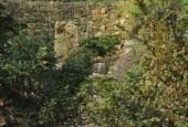http://gardenpanorama.cz/wp-content/uploads/loucen012-170x115.jpg