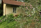 http://gardenpanorama.cz/wp-content/uploads/luftova_zahrada_IMG_6578_005-170x115.jpg