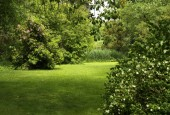 http://gardenpanorama.cz/wp-content/uploads/luftova_zahrada_IMG_6585_012-170x115.jpg