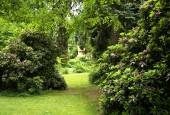 http://gardenpanorama.cz/wp-content/uploads/luftova_zahrada_IMG_6587_014-170x115.jpg