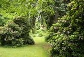 http://gardenpanorama.cz/wp-content/uploads/luftova_zahrada_IMG_6588_015-170x115.jpg