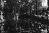 http://gardenpanorama.cz/wp-content/uploads/lux2-170x115.jpg