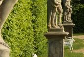 http://gardenpanorama.cz/wp-content/uploads/lysa_IMG_7882_033-170x115.jpg