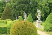 http://gardenpanorama.cz/wp-content/uploads/lysa_IMG_7900_037-170x115.jpg
