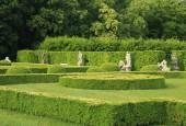 http://gardenpanorama.cz/wp-content/uploads/lysa_IMG_7912_042-170x115.jpg