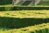 http://gardenpanorama.cz/wp-content/uploads/lysa_IMG_7940_050-170x115.jpg