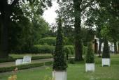 http://gardenpanorama.cz/wp-content/uploads/mosigkau_img_8148_038-170x115.jpg