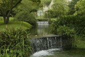 http://gardenpanorama.cz/wp-content/uploads/ninfa004-170x115.jpg