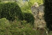 http://gardenpanorama.cz/wp-content/uploads/ninfa007-170x115.jpg