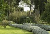 http://gardenpanorama.cz/wp-content/uploads/ninfa012-170x115.jpg