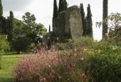 http://gardenpanorama.cz/wp-content/uploads/ninfa013-170x115.jpg