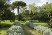 http://gardenpanorama.cz/wp-content/uploads/ninfa015-170x115.jpg