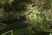 http://gardenpanorama.cz/wp-content/uploads/ninfa016-170x115.jpg
