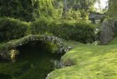 http://gardenpanorama.cz/wp-content/uploads/ninfa019-170x115.jpg