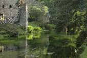 http://gardenpanorama.cz/wp-content/uploads/ninfa020-170x115.jpg