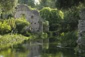 http://gardenpanorama.cz/wp-content/uploads/ninfa021-170x115.jpg